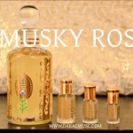 Musc Musky Rose